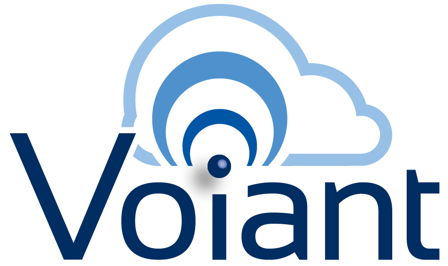 Voiant | Connected Sales Planning, Operations & Insight